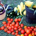 Nasza droga do idealnej formy – zmiany żywieniowe cz. 1
