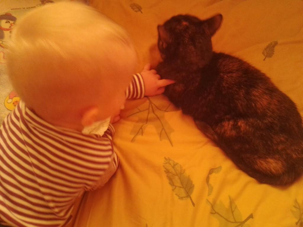 dzieci chowane w kotami