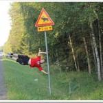 Miesiąc w Finlandii