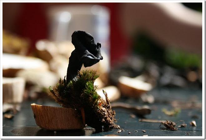 lejkowiec dęty