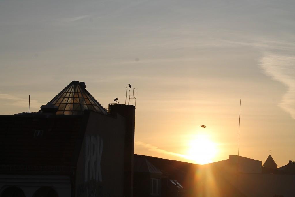 the circus hotel - widok z dachu - nasza droga do