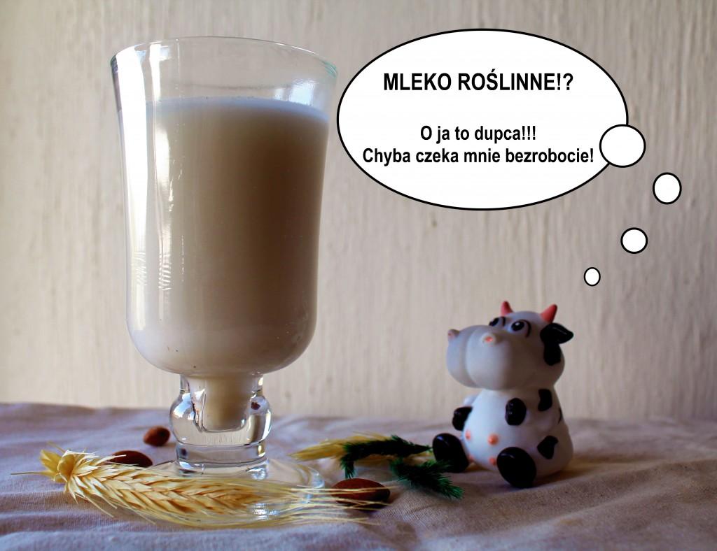 przepis na mleko z płatków owsianych, kokosa i migdałów - 1 - nasza droga do