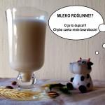 Mleko roślinne: z płatków owsianych, migdałów i kokosa