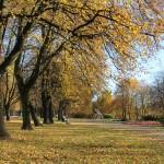 Jesienny spacer po Parku Śląskim i przejażdżka Kolejką Elką