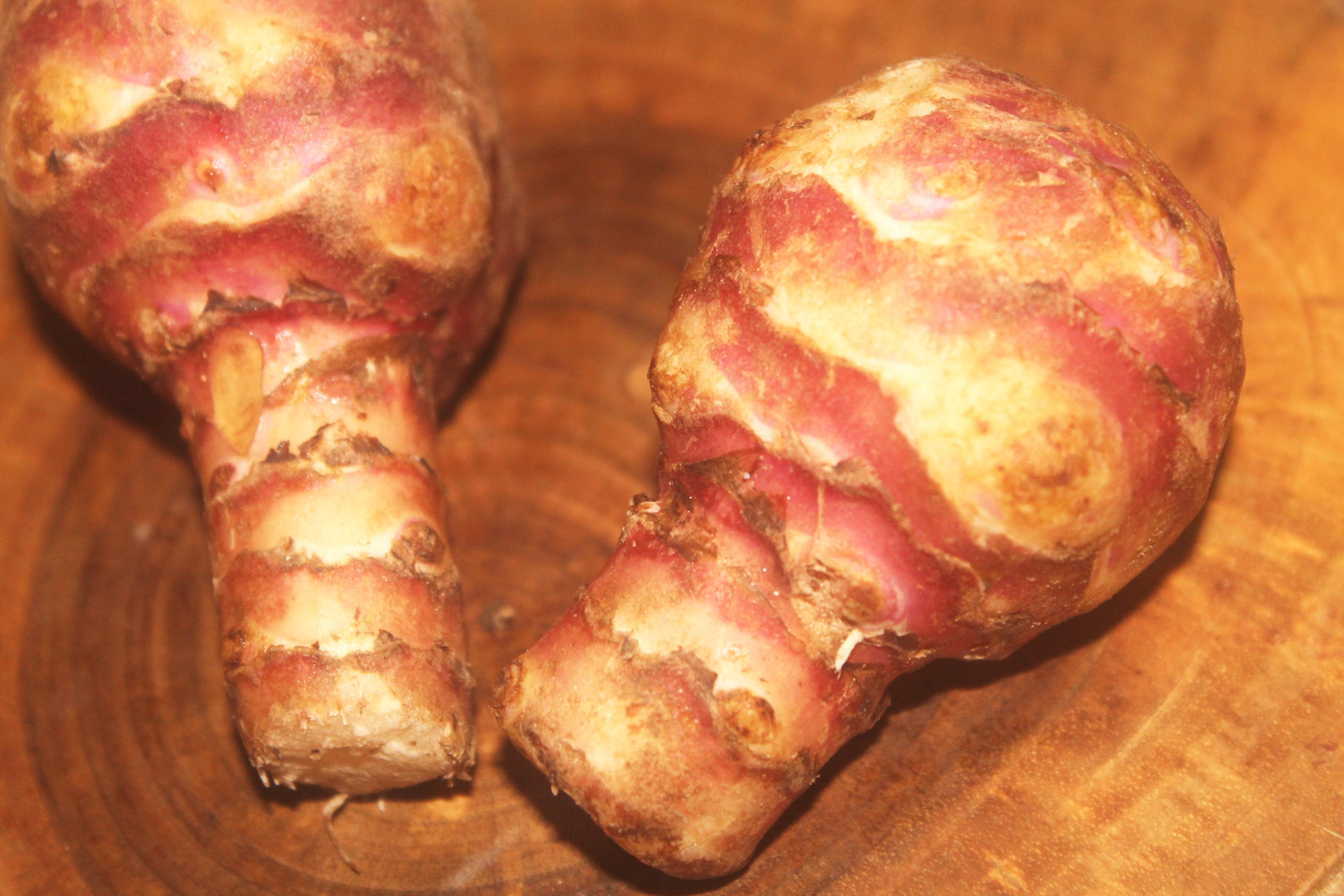 Makaron z atramentem z mątwy, z zapiekanymi filetami z udek kurczaka z topinamburem w sosie pomidorowym - nasza droga do