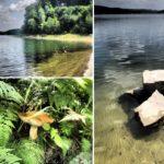 Relaks nad Jeziorem Rożnowskim