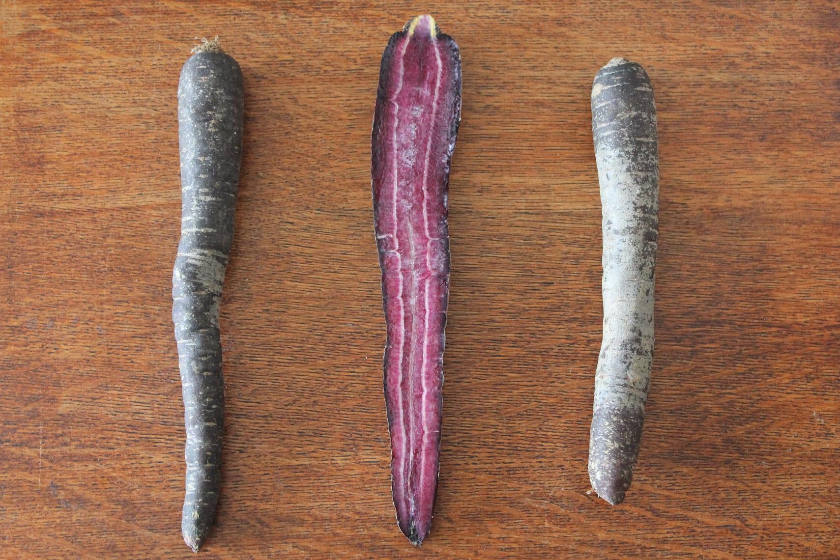 z fioletowych marchewek