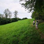 Grojec z dziećmi. Krótki szlak. Piękne widoki.
