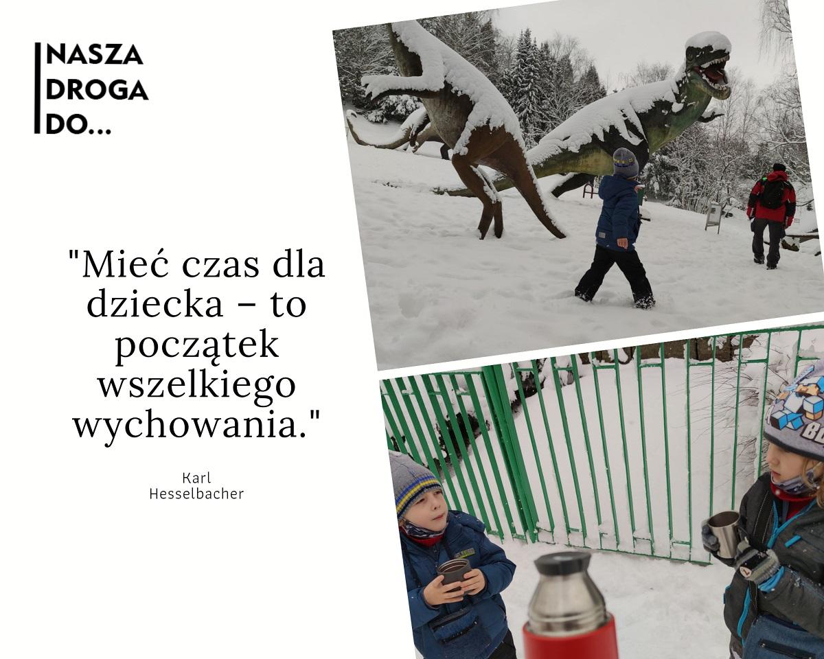 śląski ogród zoologiczny ZOO w zimie - nasza droga do