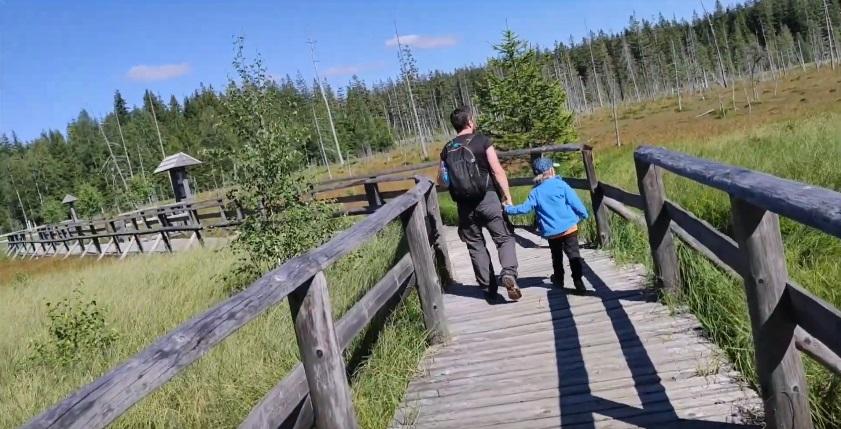 rezerwat przyrody dolny śląsk